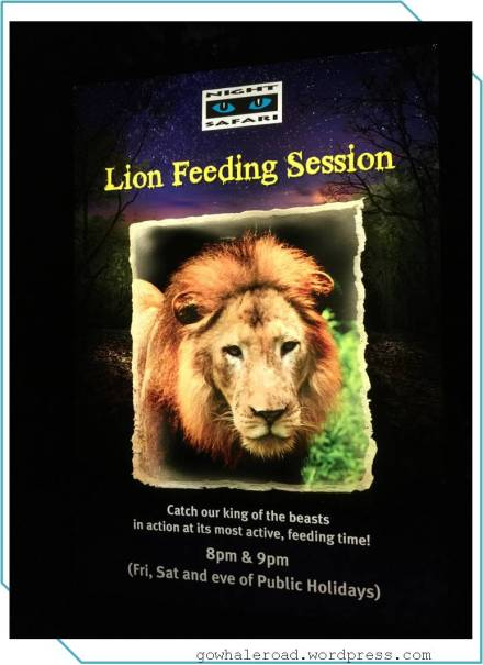 lionfeed
